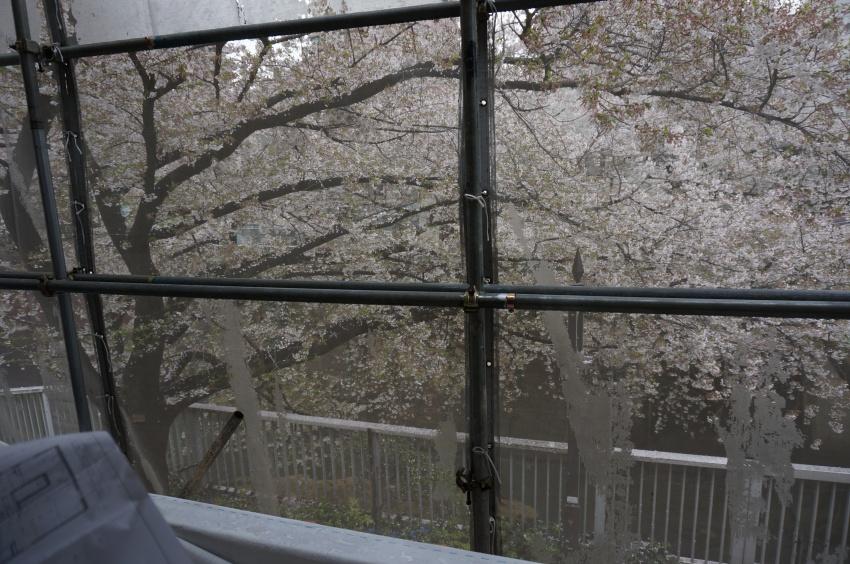 豊島区高田木造住宅 2階 桜